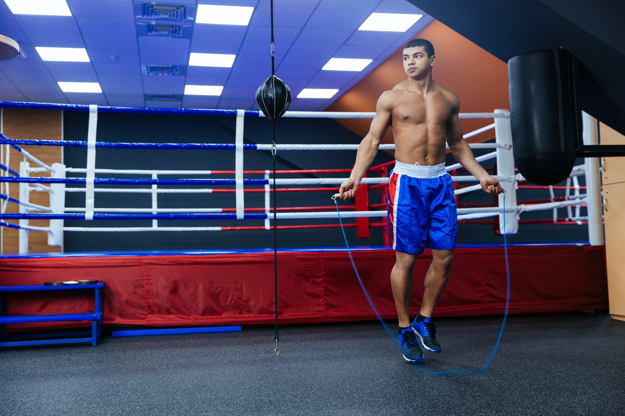 Boxer jumping with skipping rope